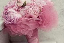 Wedding Ideas / by Jessica Pretorius