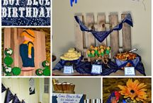 Little Boy Blue Birthday Party / Birthday Party Planning Details
