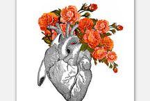 ❤ heartbeats ❤