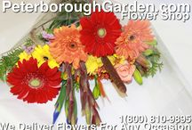 Fresh Cut Flower Bouquets / Assorted Fresh Cut Hand Tied Flower Bouquets!  These also can be placed into a vase! We can customize any order. We deliver!