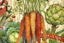 Alimentos Nutrição Natural