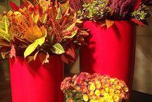 Autumn Love / by Fatty Sundays