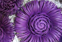 kwiaty srodki kwiatowe