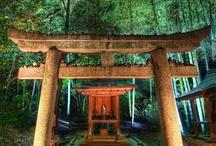 Japan / by Jeannie George