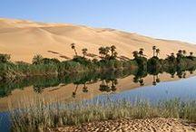 OASIS WATER IN THE DESERT