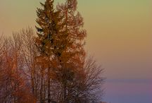 Beautiful Scenery / by Sandra Marie