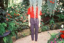 Project: Botanical