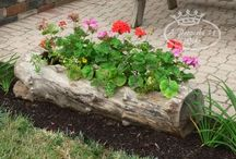 gardens and tips / garderns flower beds and gardening tips