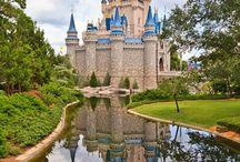 Walt Disney World / by Adventures By Kim