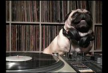 DJ Pugs