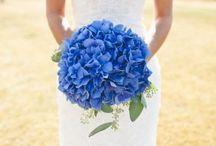Wedding / by Stefani Marchesi