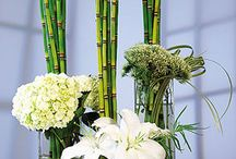 Modern Designs / by Maxit Flower Design
