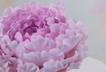 Zuckerblüten aus Blütenpaste