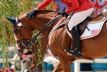 horseaholic