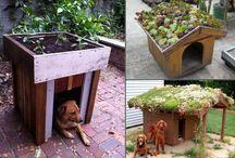 Jardinería creativa / Jardinería