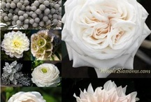 Color Inspiration: Black and White / Nothing more classic than a black and white wedding