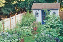 Min framtida Trädgård