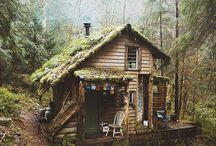 Cabins and wood