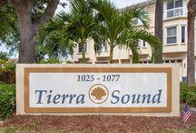 Tierra Verde Homes / Luxurious homes in Tierra Verde FL.