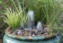 water in mijn tuintje