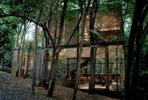 Casas en bosque