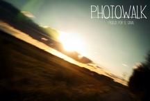 [ PHOTO ] - Landscapes
