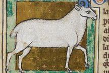 Middeleeuwse boektekeningen/ Medieval bookdrawing
