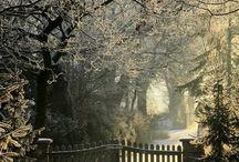 английский садик