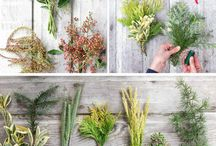 {{creating with plants, herbs, flowers}}