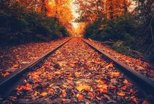 Autumn inspiration photos