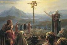 8. Behold lamb of god