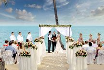 Free Classifieds - Wedding Ideas / Post your Free ads In Wedding Ideas.