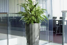 pots & planters / by Office + Contract Furniture