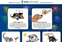 Holiday Safety Tips / Every holiday has risk factors for pets.  Learn what can be dangerous and how to protect your pet.