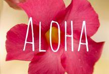 aloha <3