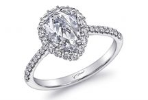 Coast Diamond / A collection of our must-haves from Coast Diamond