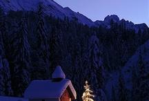 Christmas Time!  / Ideas / by Vicky Vera