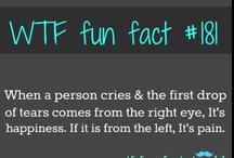 Szalone fakty