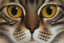 кошки рисунок
