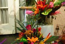 Bloem tropisch exotisch / Oranje roze etc