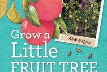 grow little fruit tree