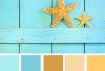 Paletas color