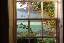 ~THROUGH the WINDOW~ / by Diane Harris-Day