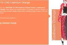Cadmium Orange wedding