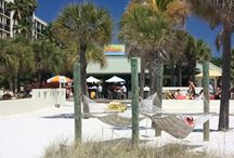 St. Pete Beach/Clearwater/Tampa / by Linda