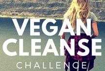 Vegan / Recipes