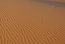 SAND and SHELLS / Sand sand sand