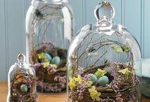 Cloche/Apothecary Jar Ideas