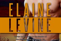 Shattered Valor Red Team Book #2 By Elaine Levine / By Elaine Levine