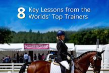 Dressage / Dressage Horses, Dressage Riding and All things Training